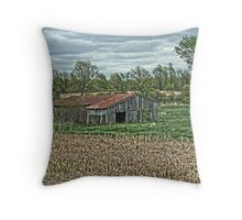 Ramshackle Farm Shed Throw Pillow