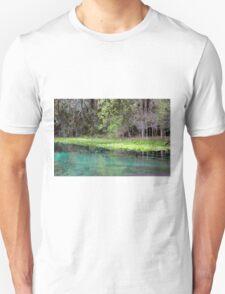 Bank of Beauty, Rock Springs T-Shirt