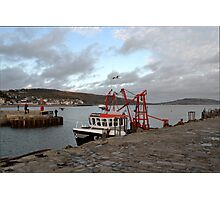 Evening at Lyme Harbour Photographic Print