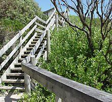 Stairway to Diamond Beach by Gary Kelly
