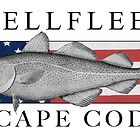 Wellfleet, Cape Cod Fish Flag by Christopher Seufert