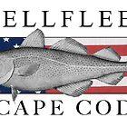 Wellfleet, Cape Cod Fish Flag by Christopher Seufert