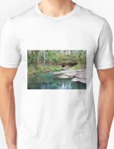 The Entry Way, Rock Springs T-Shirt