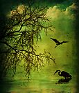 Serenity by Nathalie Chaput