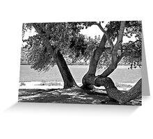 LAKEFRONT No.2 Greeting Card