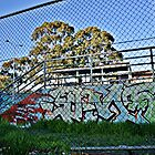 Skate Park Graffiti by mattsibum
