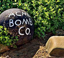 Bombs Away by pat gamwell