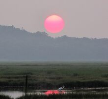 Summer Sunset over the Great Marsh by Kamalyn