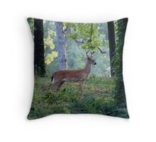 The WISE one! Throw Pillow