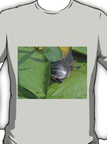 Young Painted Turtle on Lily Pads T-Shirt
