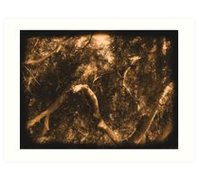 Study in Light and Shadow: Lush Foliage and Tangled Branches in Sepia #2 Art Print