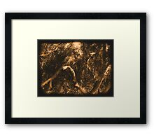 Study in Light and Shadow: Lush Foliage and Tangled Branches in Sepia #2 Framed Print