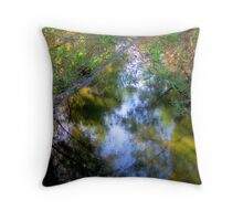Light on Foliage, Branches and Water Throw Pillow