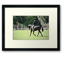 Willow Croft Black Jack NT EA HOTY Pony  Framed Print