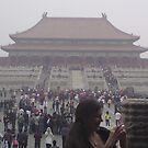 Forbidden City by barnsy