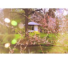 Here I, Spring, Am Photographic Print