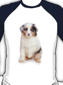 Cute Puppy Australian Shepherd T-Shirt