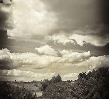 Ukrainian fields and sky by Tutelarix