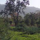 Xi'an Countryside by barnsy