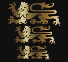 Three Lions by Rowan  Lewgalon