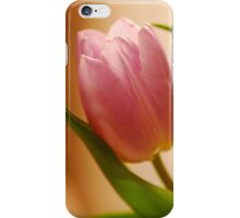 Gentle Tulip  iPhone Case/Skin