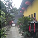 Buddhist Temple Shanghai 2 by barnsy