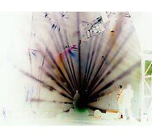 Fairytale Gig Photographic Print