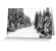 Ski Trails Greeting Card