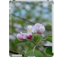 Wellwood's Spring Apple Blossoms - 3 iPad Case/Skin