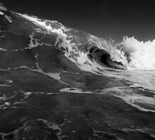 The Curl by Damien O'Halloran