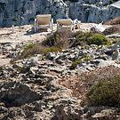 On the rocks by Jakov Cordina