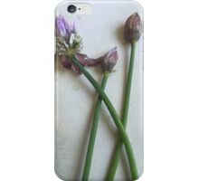 Vintage Botanical iPhone Case/Skin