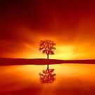 Reflection of a Sunset by Helmar Designs
