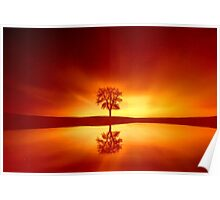 Reflection of a Sunset Poster