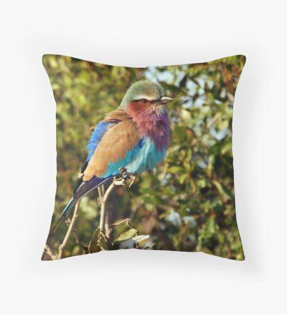 Winter Fluff - Lilac Breaster Roller, Okavango Delta Throw Pillow