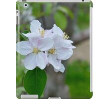 Wellwood's Spring Apple Blossoms - 5 iPad Case/Skin