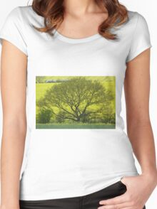 Yellow and green landscape Women's Fitted Scoop T-Shirt