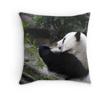 Panda Food Throw Pillow