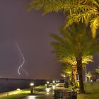Dancing Lightning by Phillip Mangels