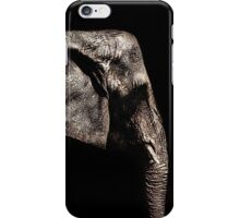 Elephant Portrait Fine Art Print iPhone Case/Skin