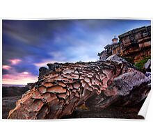 Whale Rock at Watsons Bay Poster