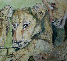 Curious Cubs by Kellea Croft