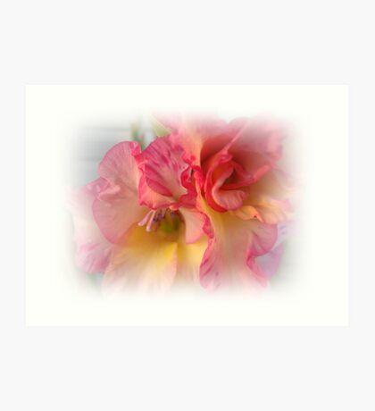 Gladiola - Up Close Art Print