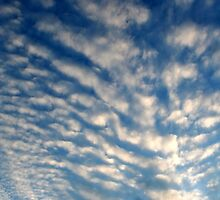 Spiny Clouds by starlitewonder