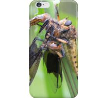 Robber Fly Having Lunch iPhone Case/Skin