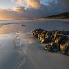 Rarawa Sunrise. by Michael Treloar
