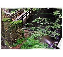 Fillmore Glen State Park VIII Poster