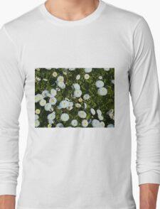 White Daises Long Sleeve T-Shirt