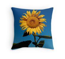 Sun Worshiper Throw Pillow