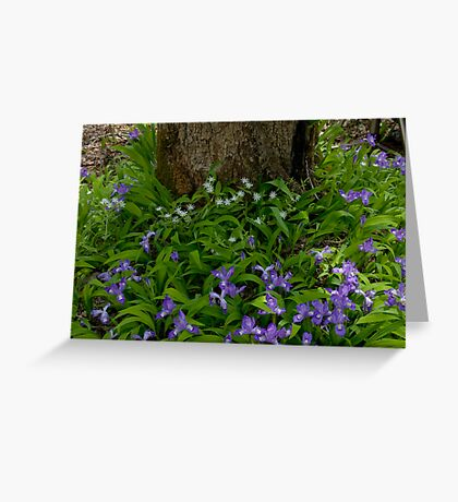 Woodland Bouquet   Greeting Card